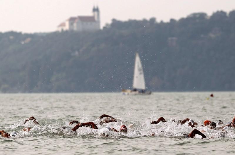 Nyíltvízi úszók - Balatonfüred