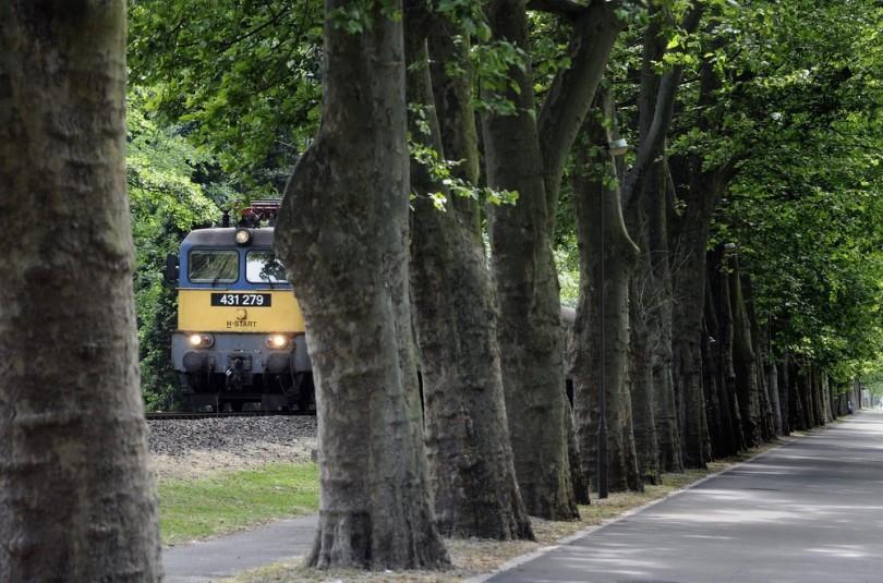 Vonat Balatonföldvárnál